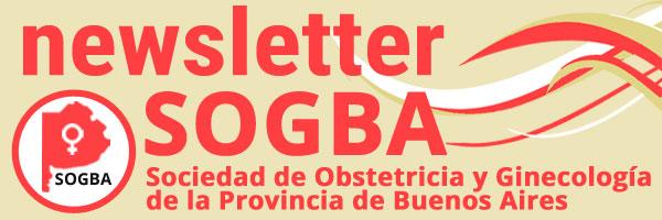 Plantilla Newsletter SOGBA